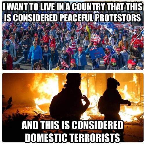 Domestic Terrorism •